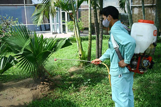 dịch vụ diệt muỗi bằng sinh học