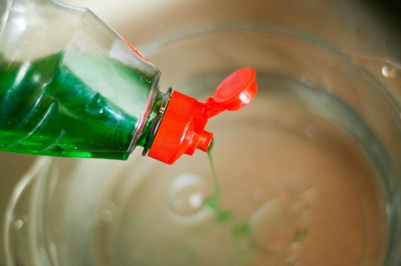 Sử dụng nước rửa chén để diệt muỗi cực kỳ hiệu quả