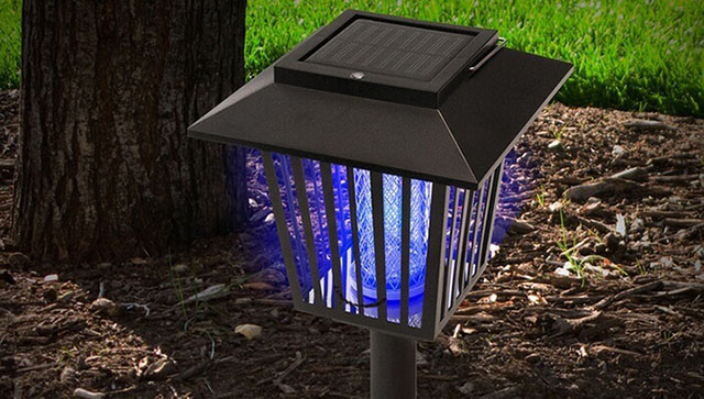 mua đèn bắt muỗi ở đâu