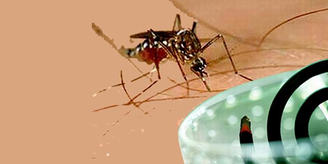 Những lưu ý khi sử dụng nhang muỗi