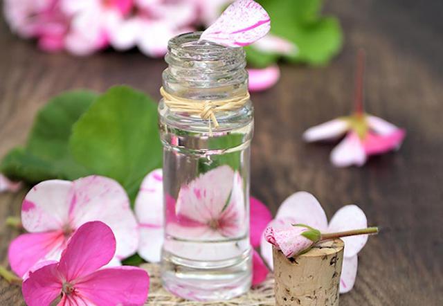 Tinh dầu hoa phong lữ đuổi muỗi