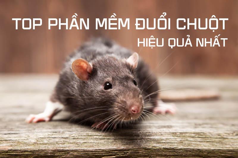 TOP những phầm mềm đuổi chuột hiệu quả an toàn hơn