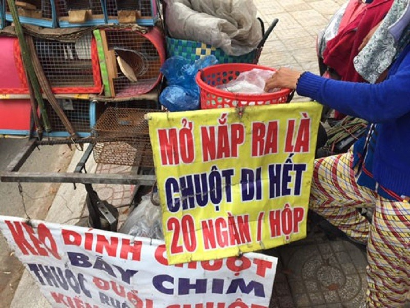 Mở nắp ra là chuột đi hết đang được bày bán rộng rãi trên nhiều tuyến đường