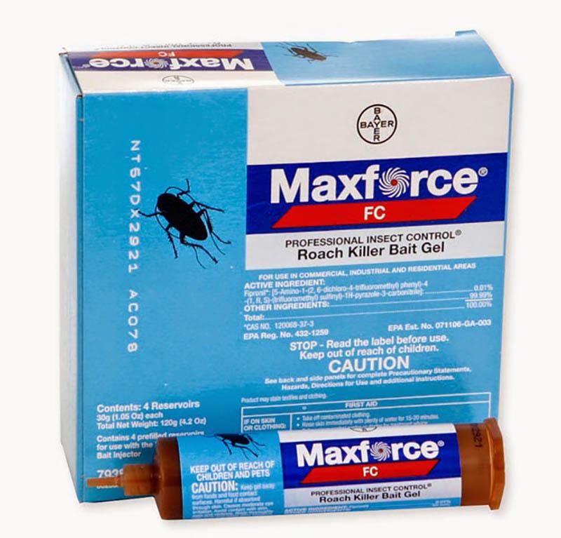 Sử dụng bả Maxforce để diệt gián