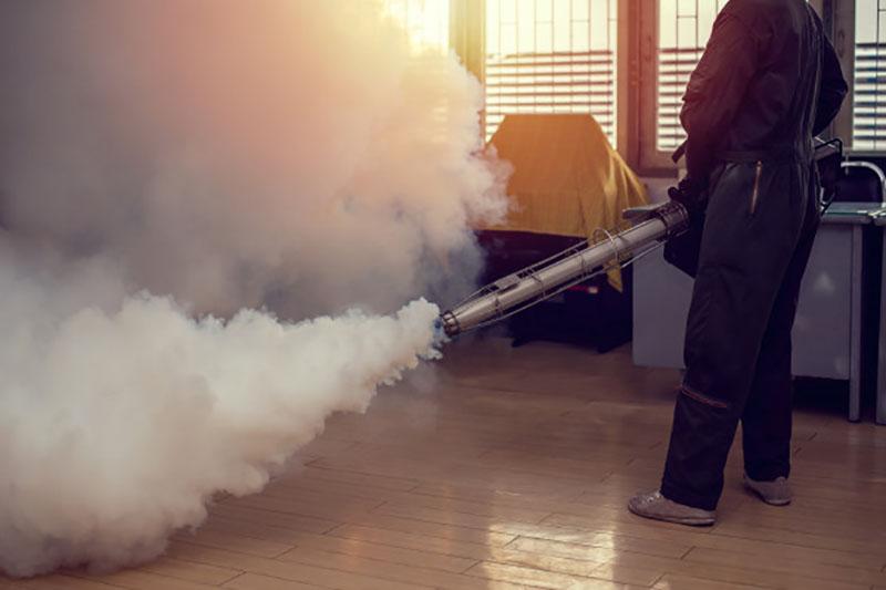 Các công ty diệt côn trùng Đà Năng đáp ứng nhu cầu kiểm soát côn trùng cho nhà riêng, cơ quan, trường học...