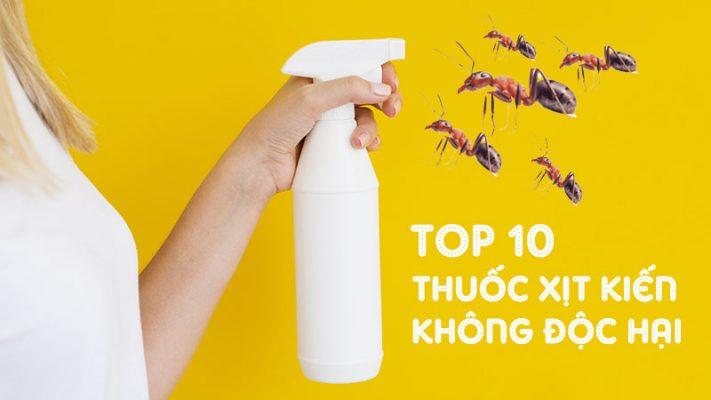 TOP 10 thuốc xịt kiến không độc hại hiệu quả và an toàn