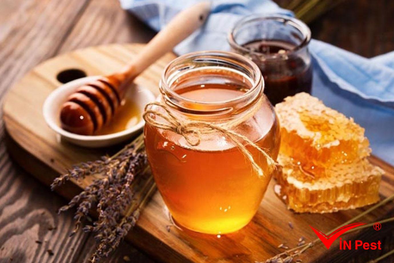 Cách trị bệnh giời leo tại nhà đơn giản từ mật ong